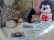 Наше знакомство с праздником Groundhog Day